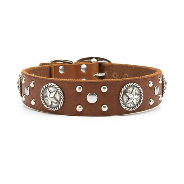 "Silver Rope Stars Leather Dog Collar - Standard 1.25"" or 1.5"" Width"