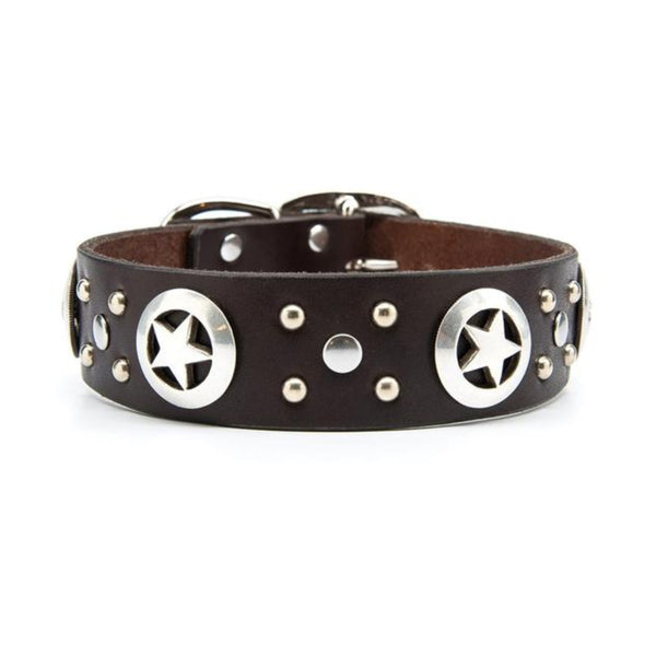 "Silver Stars Leather Dog Collar - Standard 1.25"" or 1.5"" With"