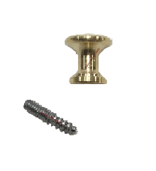 "Piano Desk Knob, Brass 5/8"" Dia. with Wood Screw"
