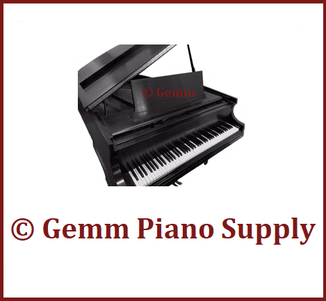 Gemm Piano Supply is at the 2018 China Shanghai Music Show!