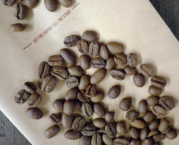 Gayo Aceh Peaberry 500 gr