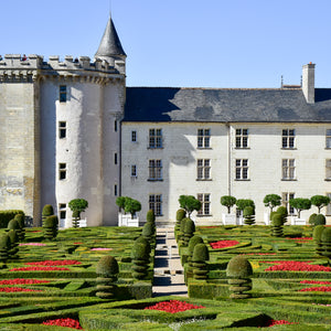 The exquisite French gardens of Chateau Villandry