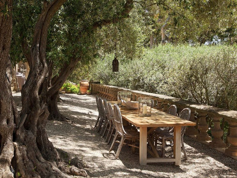 Under the olive trees cane chairs, antique table, classic saladino Mediterranean landscapes