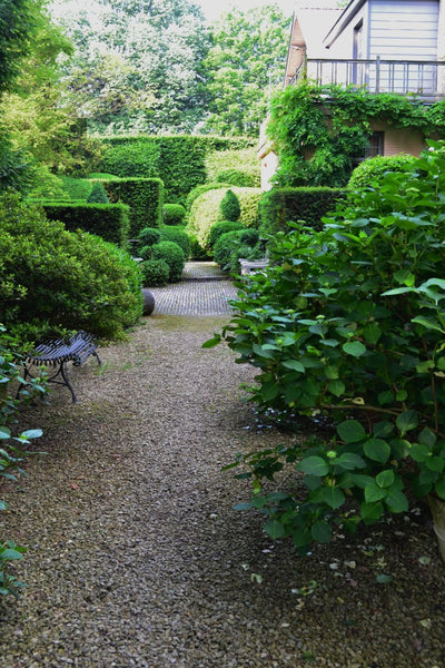 Lush green garden with pea gravel and boxwood - Walda Pairon