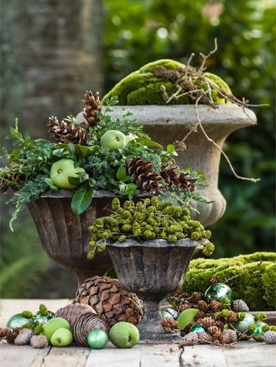 Medici urns planted with moss and decorated with winter foilage