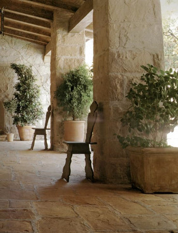 Antique chairs and trees in terracotta planters in an outdoor room - Saladino