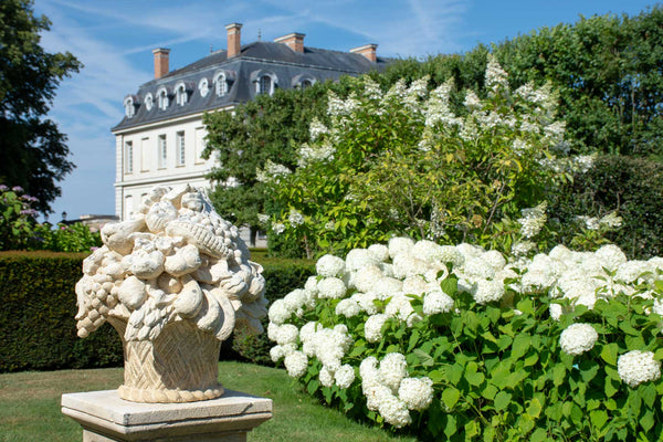 Hydrangea Robusta formal French gardens Chateau du Grand Luce garden sculpture