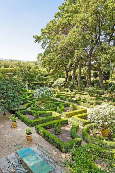 boxwood hedge geometric garden French garden