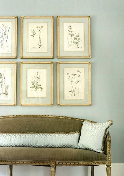 Vintage French herbarium gallery wall French farmhouse interior design ideas