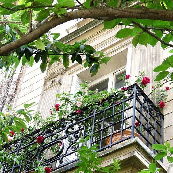 Balcony in Paris covered in flowers and geraniums