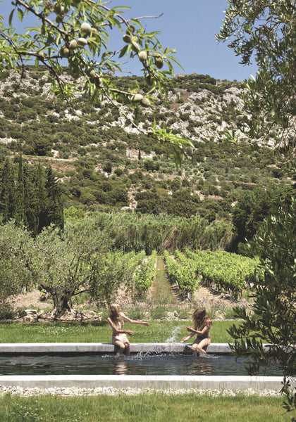 Provincial garden with swimming pool vineyards and olive trees Helmkampf