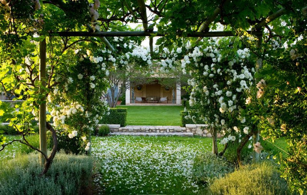 Rose arbor symmetrical green planting french landscape farm modern Lafourcade