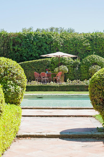 Terrace beside pool classic French garden