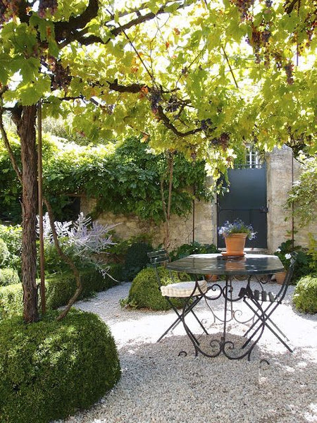 8 ways to create your french garden chez pluie for Creating a low maintenance garden