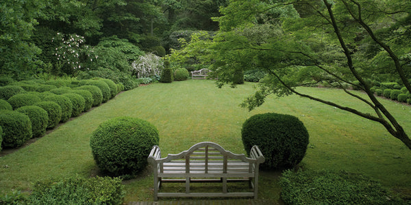 Lush lawns with box wood and timber garden benches - Walda Pairon
