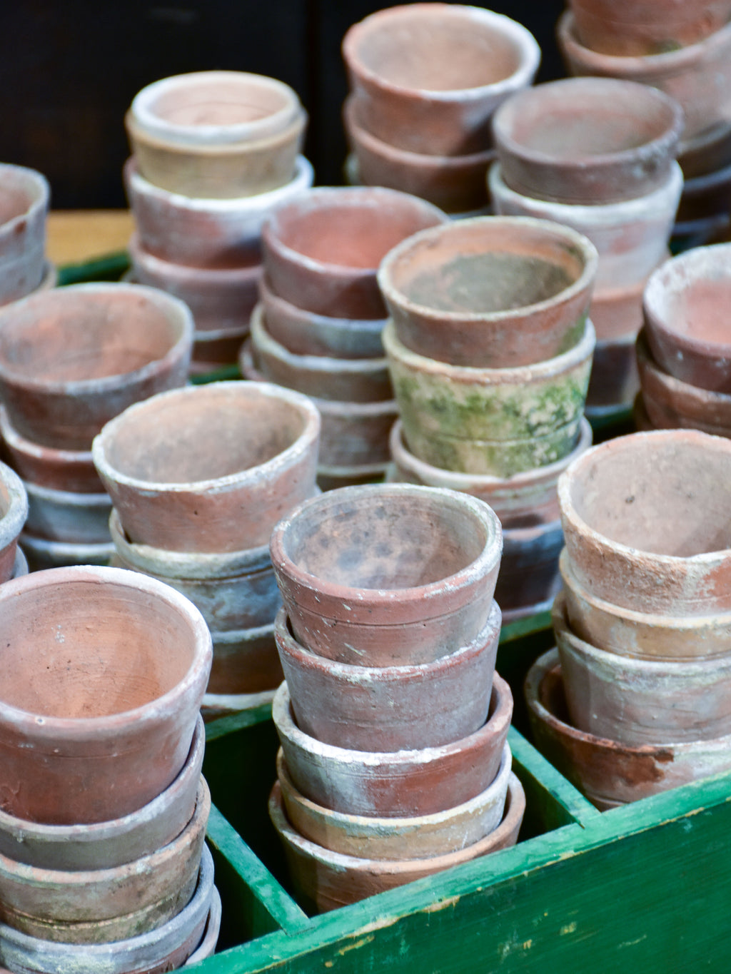 Collection of six vintage terracotta garden pots
