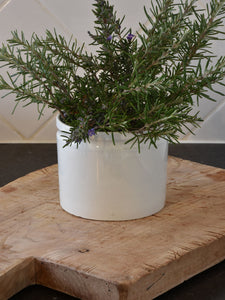 "5""? French ironstone preserving jar - late 19th century 2/2"