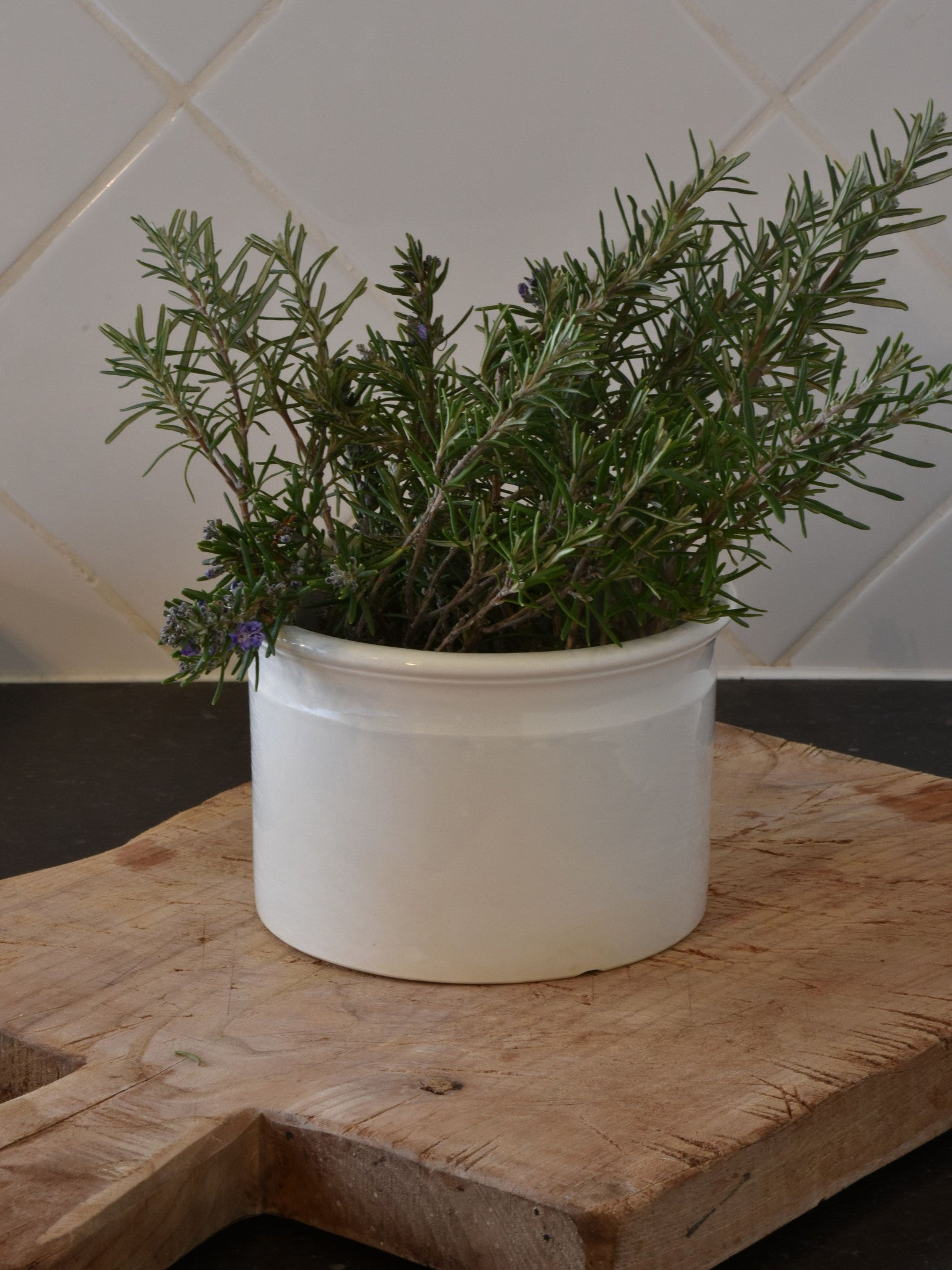 "6""? French ironstone preserving jar - late 19th century"