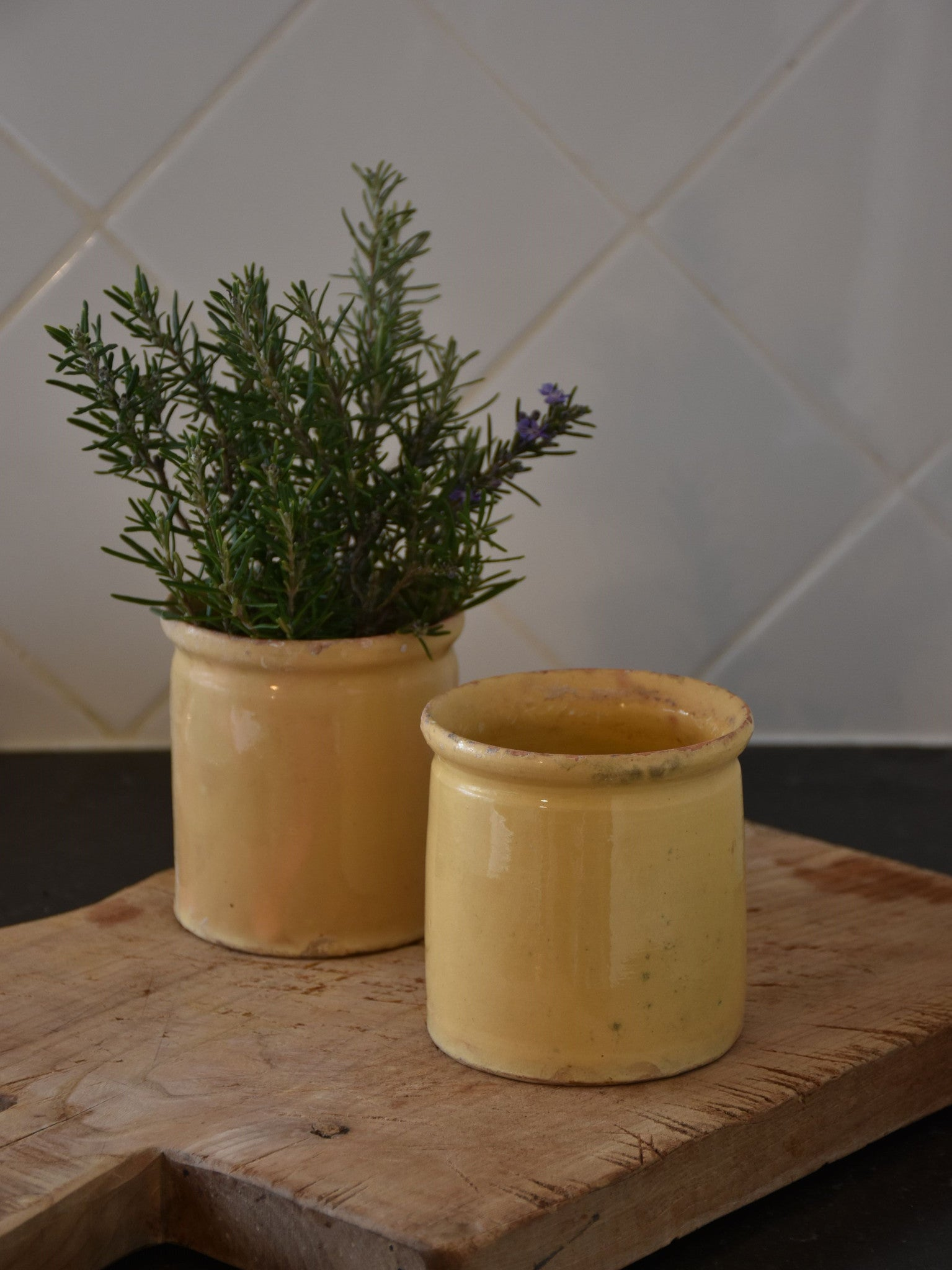 19th century French yellow ware preserving jars - two