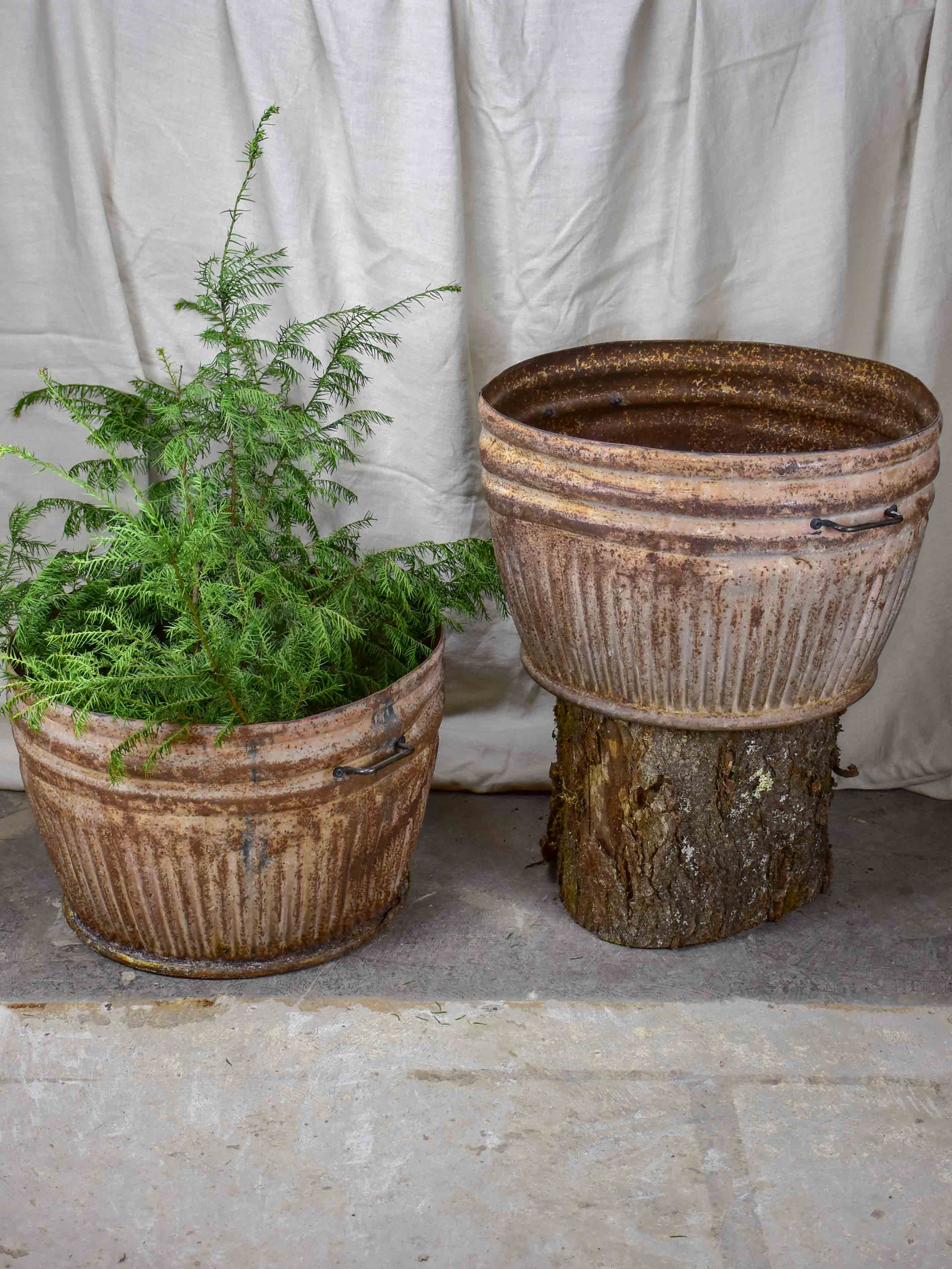Two very large metal pot plant stands - antique French