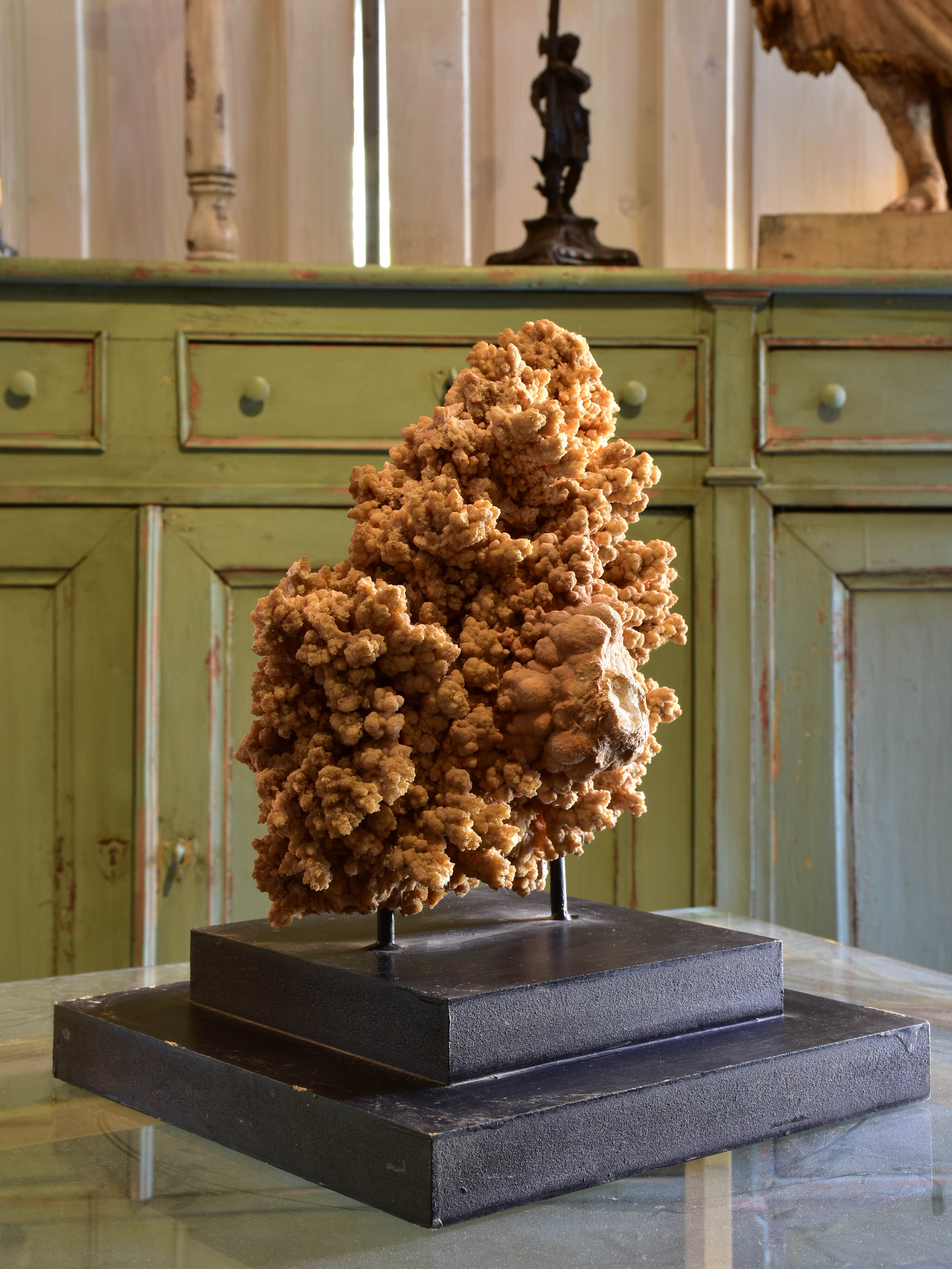 Large mounted coral on two tier square base