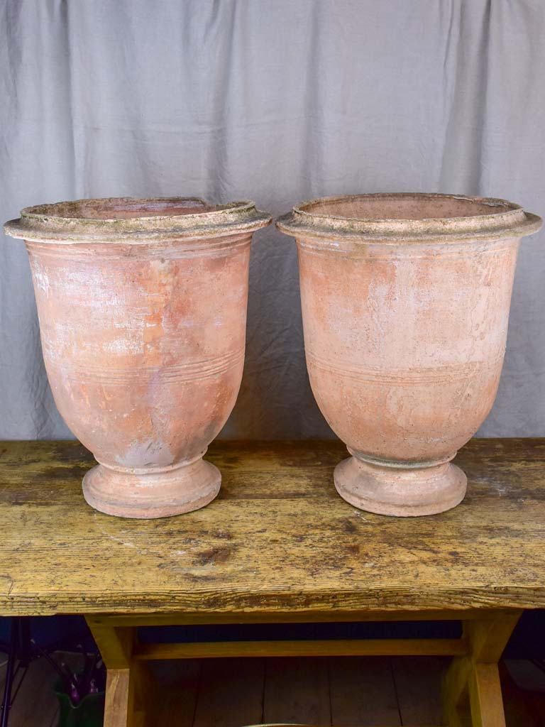 Pair of terracotta Anduze garden urns