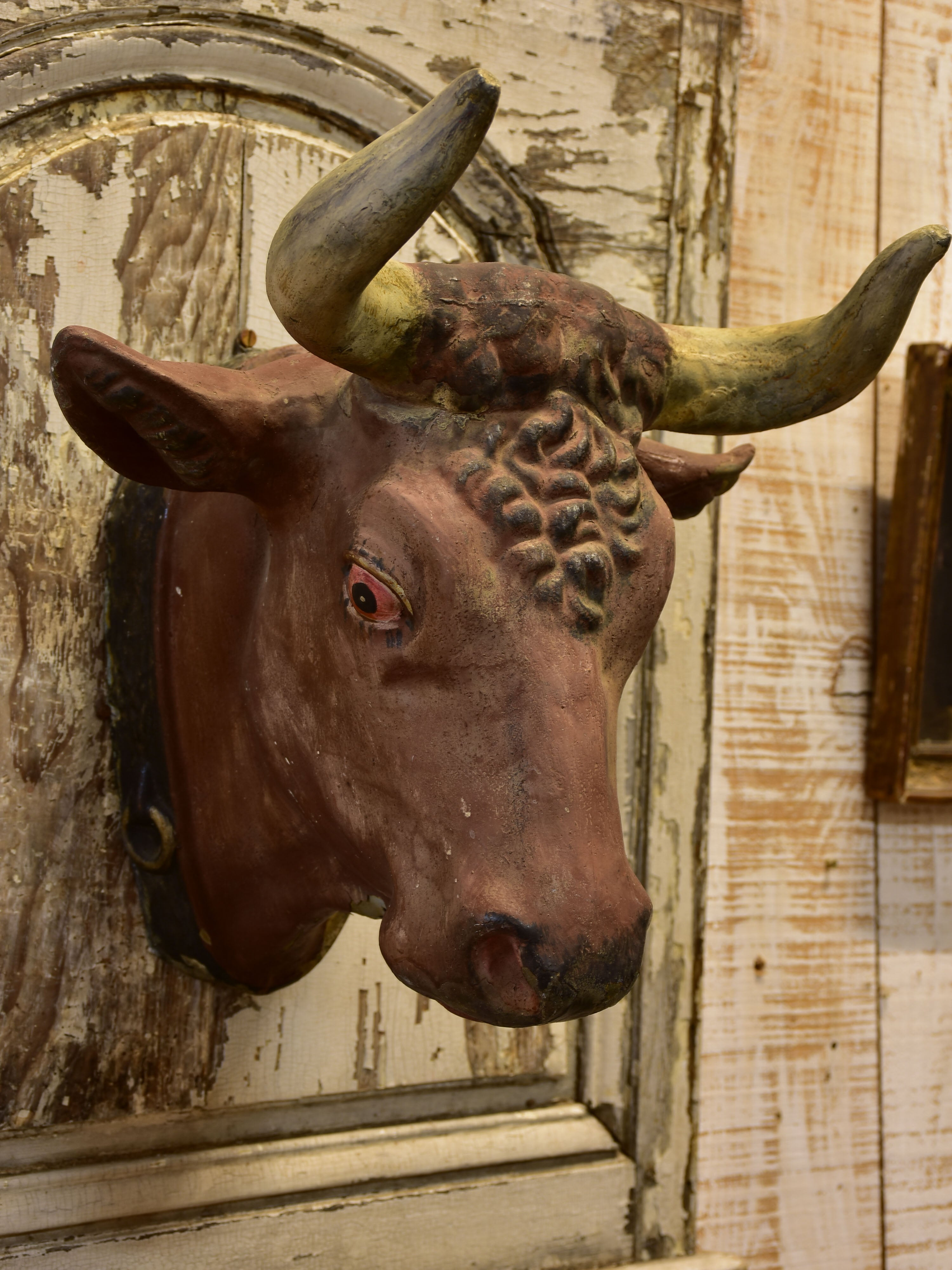 Rustic French cows head from a Butcher's shop
