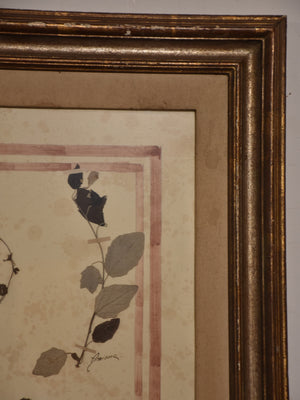 Italian botanical flowers in a 19th century frame