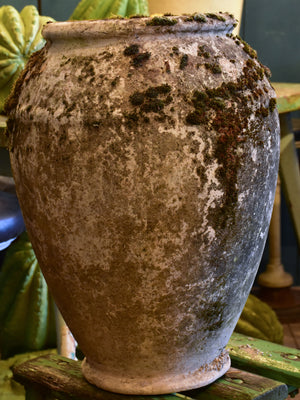 Early 20th century French garden pot