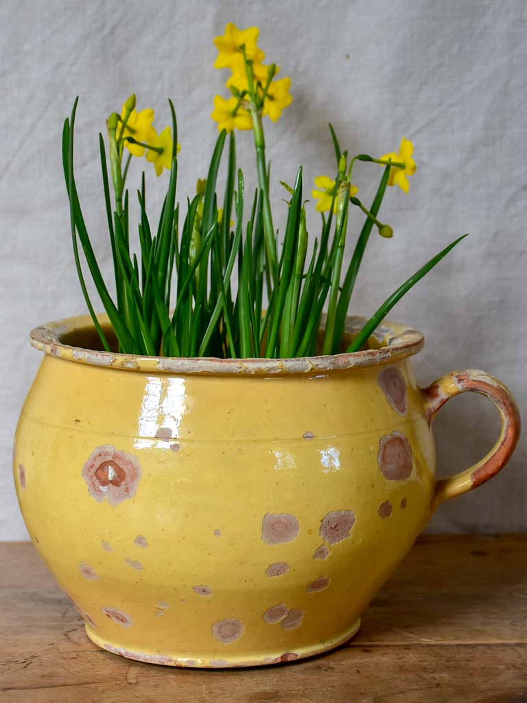 Antique French chamber pot with pale yellow glaze