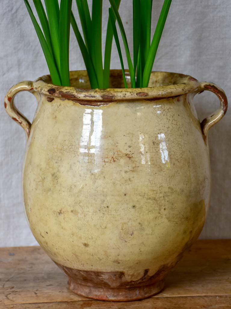 Large antique French confit pot with beige crackled glaze 9¾""