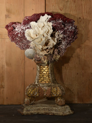 Mounted Coral specimens on antique base – red and white
