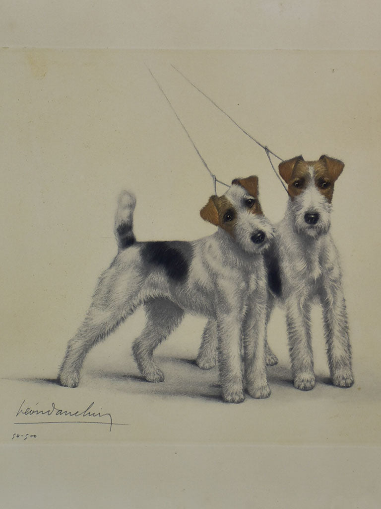"Lithograph 50/500 fox terriers - Léon Danchin (1887-1938) 24¾"" x  30¼"""