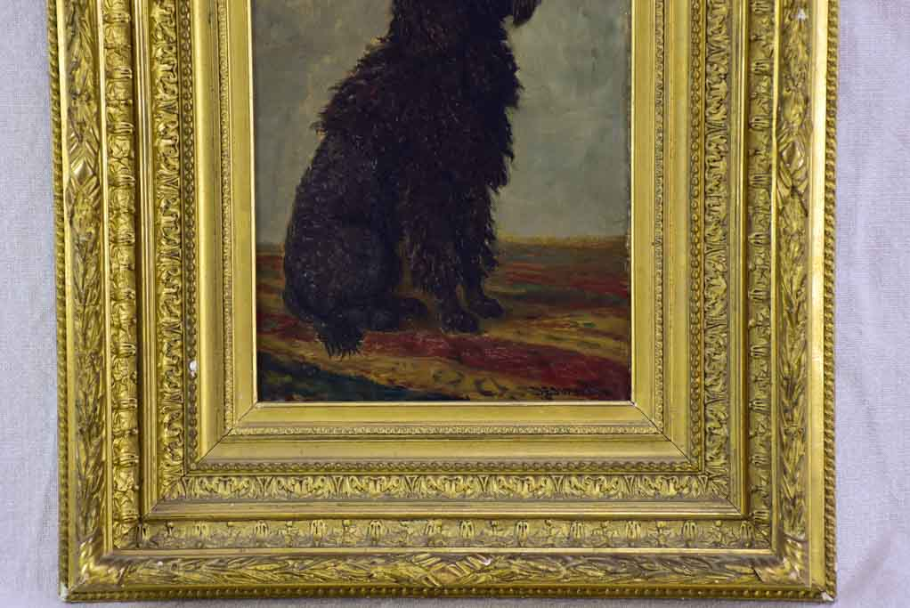 "Portrait of a poodle named Capi -  Raymond Desvarreux (1876-1961) 17"" x 14½"""