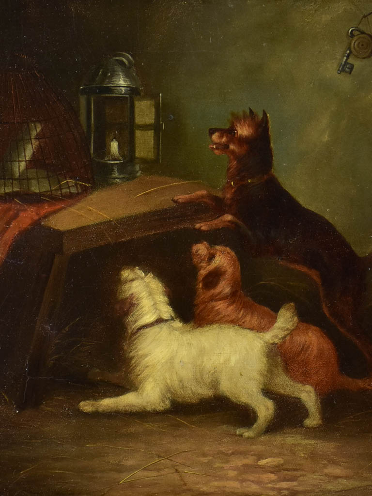 """Dogs watching a rat"" - Harry Bright (1846-1895) 17¾"" x 21¾"""