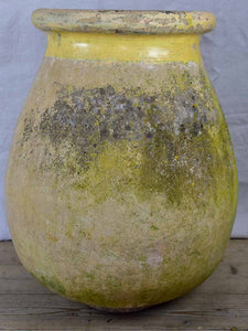 19th Century French Biot olive jar 27½""