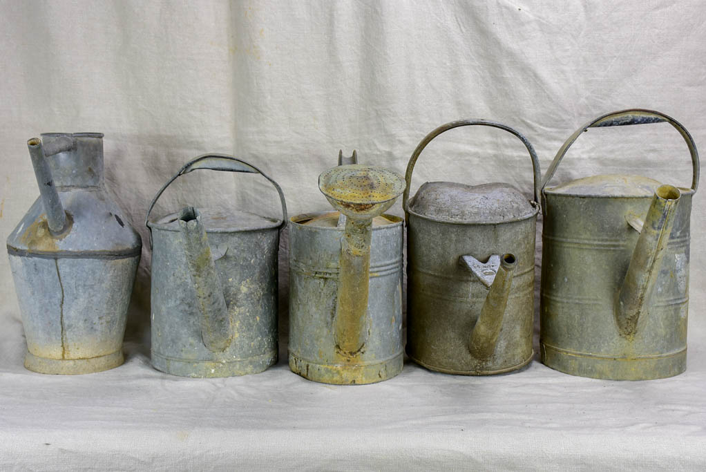 Collection of five antique zinc watering cans