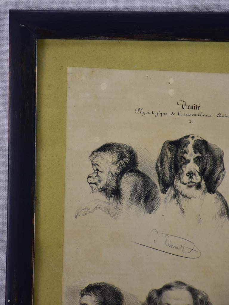 "19th century French engraving ""man and animal"" homme et animal - anonymous 13¾"" x 18"""