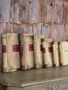 Collection of five antique parchment record books