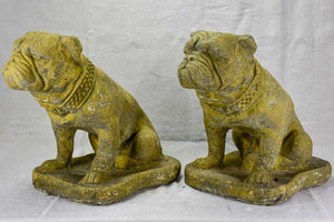 Pair of antique French garden sculptures of bulldogs 15¼""