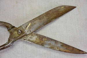Early 20th Century tailor's scissors 2/3
