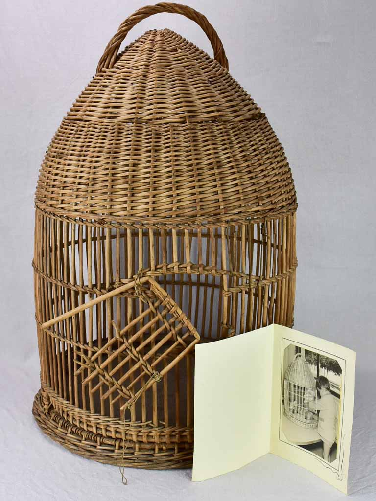 1950's French cane birdcage with original photo 30¾""