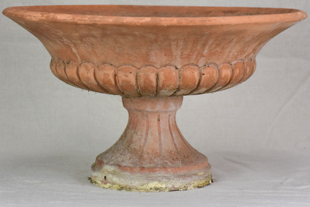 Antique French terracotta planter - Medici urn 19¼""