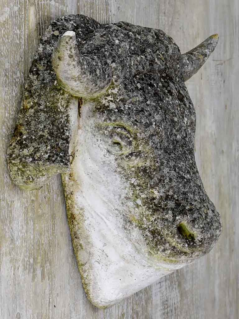 Reconstituted stone cow's head - 1940's. 17¾""