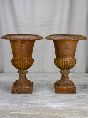 Pair of 19th Century cast iron Medici urns 13½""