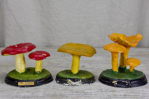 Collection of three antique French pharmacy mushrooms