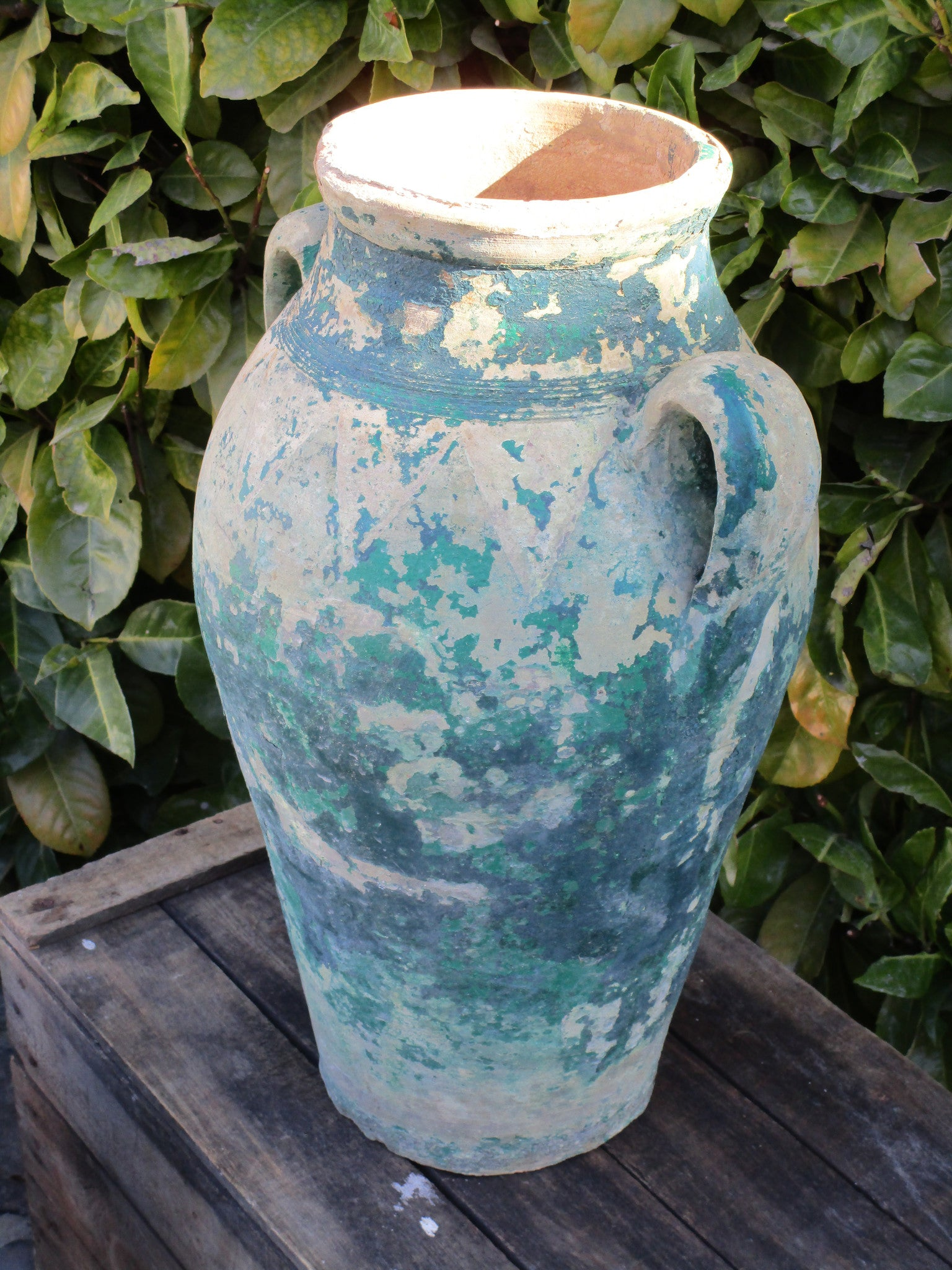 Pair of French amphora garden pots