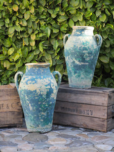 Pair of French garden pots