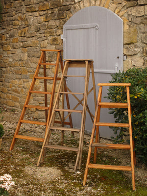 Lyonnaise library ladder - six steps