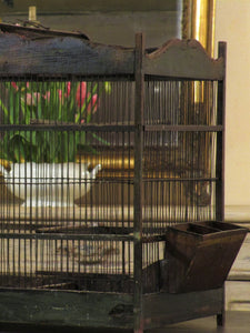 Antique birdcage 61